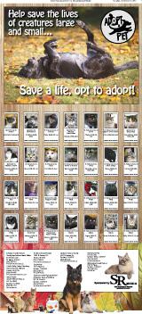 Adopt A Pet 2012