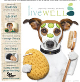 LiveWell Spring 2013