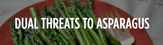 Threats to asparagus