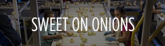 onion mainbar