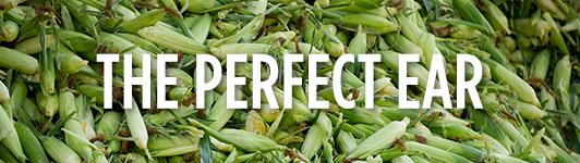 Corn mainbar