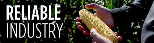 Corn sidebar