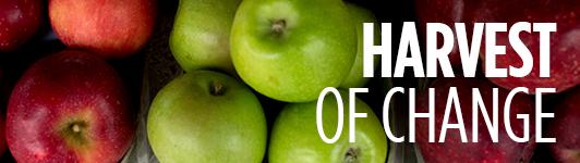 Apple harvest mainbar