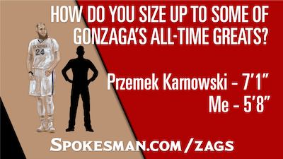 Interactive Zags height graphic