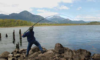 Salmon fishing closed on Columbia River   The Spokesman-Review