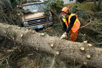 City Of Spokane Worker Mike Zangara Helps Remove A Spruce At 2603 S Monroe St