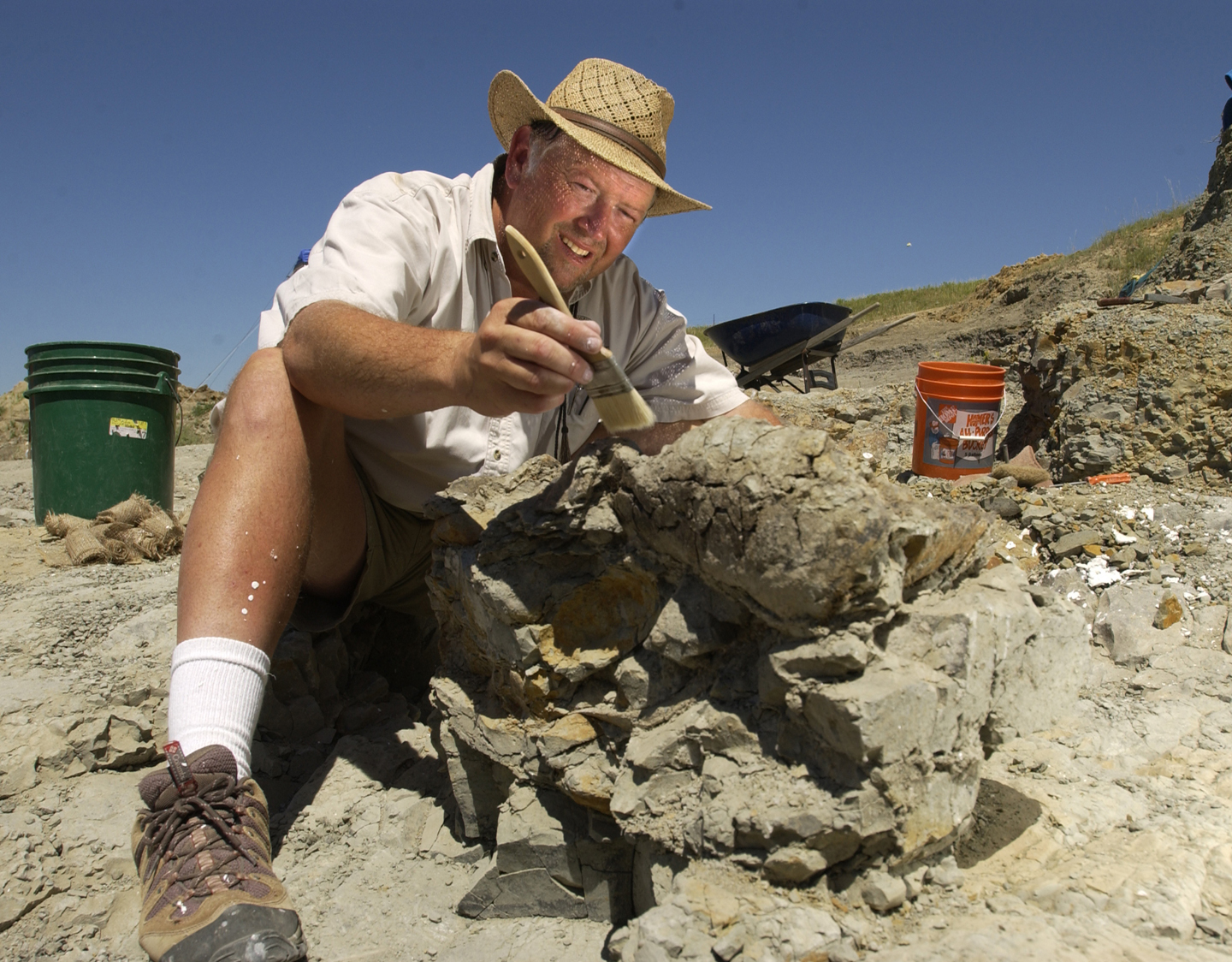 paleontologist to plead guilty to stealing fossils from blm land
