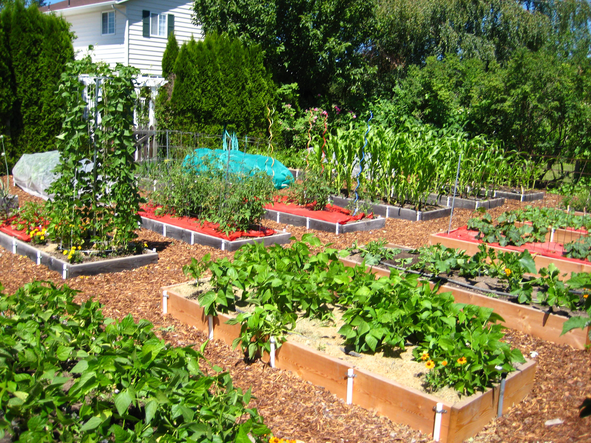 Raised Beds Give Plants Reason To Smile The Spokesman Review
