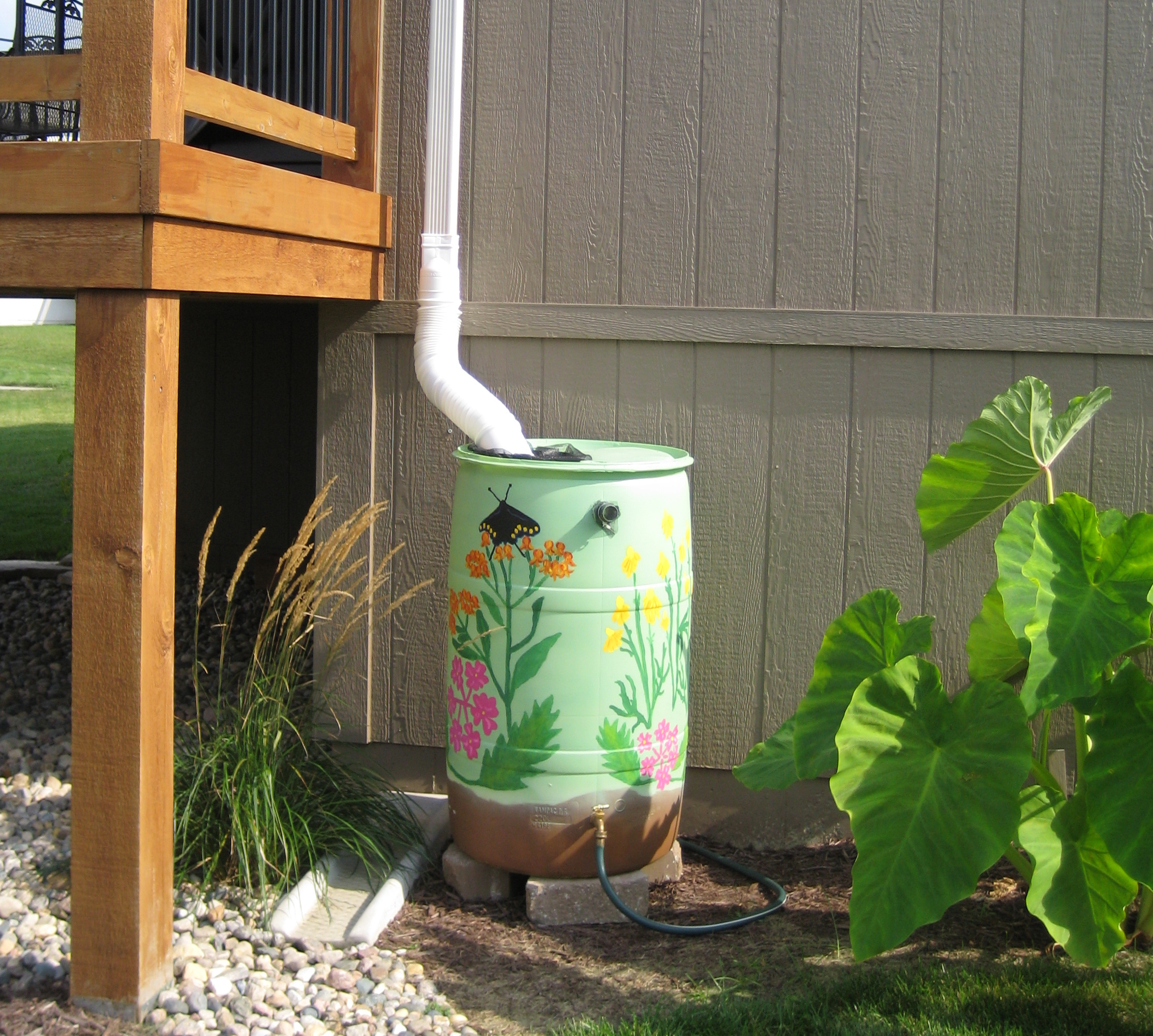 A Decorated Rain Barrel, U201cButterfly Garden,u201d Is Connected To A Downspout In
