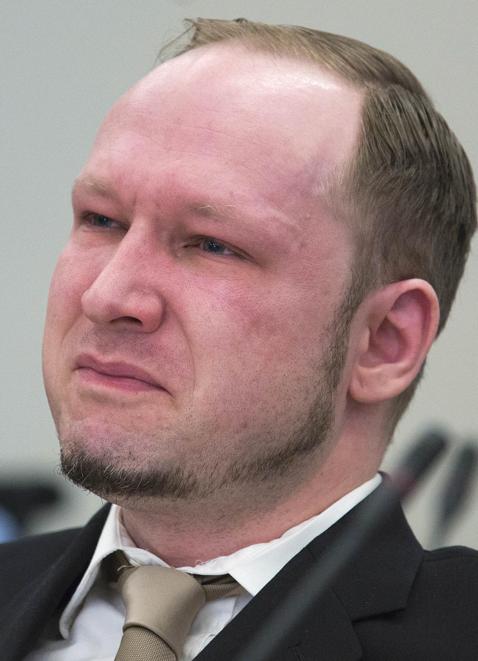 Are Anders behring breivik