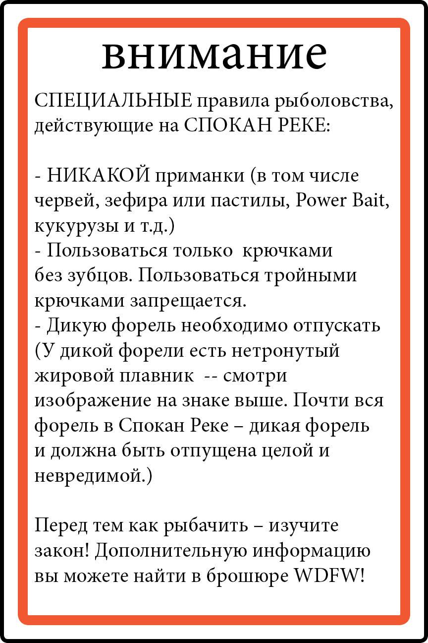 Russian language rules 37