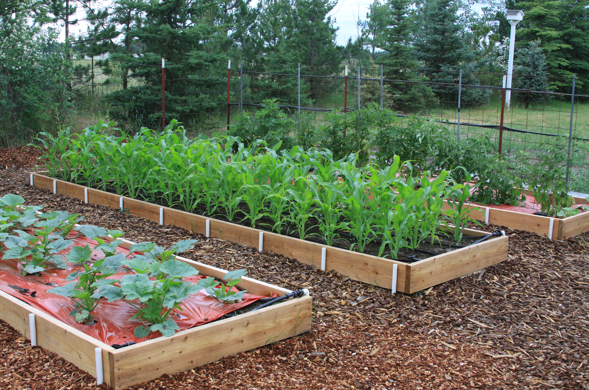 Portable Vegetable Garden Beds