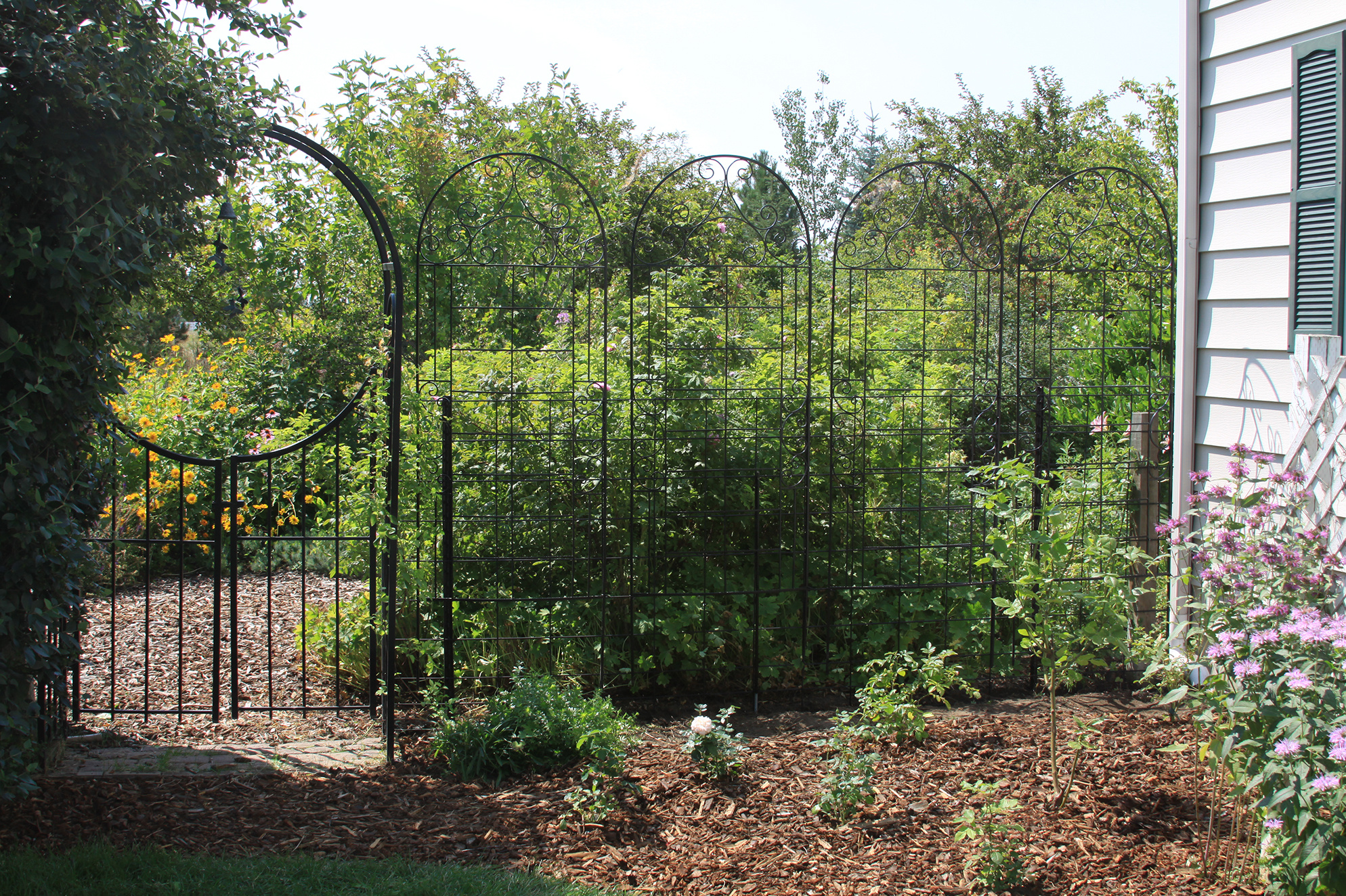 These Trellises Create An Attractive Entrance To The Garden While Making It  More Challenging For Deer