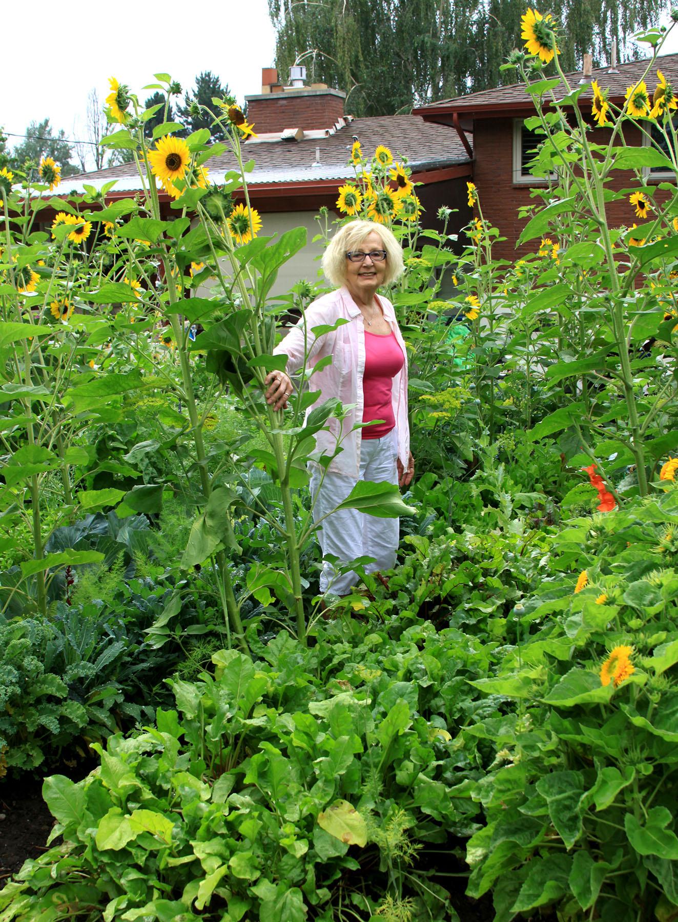 in the garden lasagna gardening yields big harvest the spokesman review. Black Bedroom Furniture Sets. Home Design Ideas