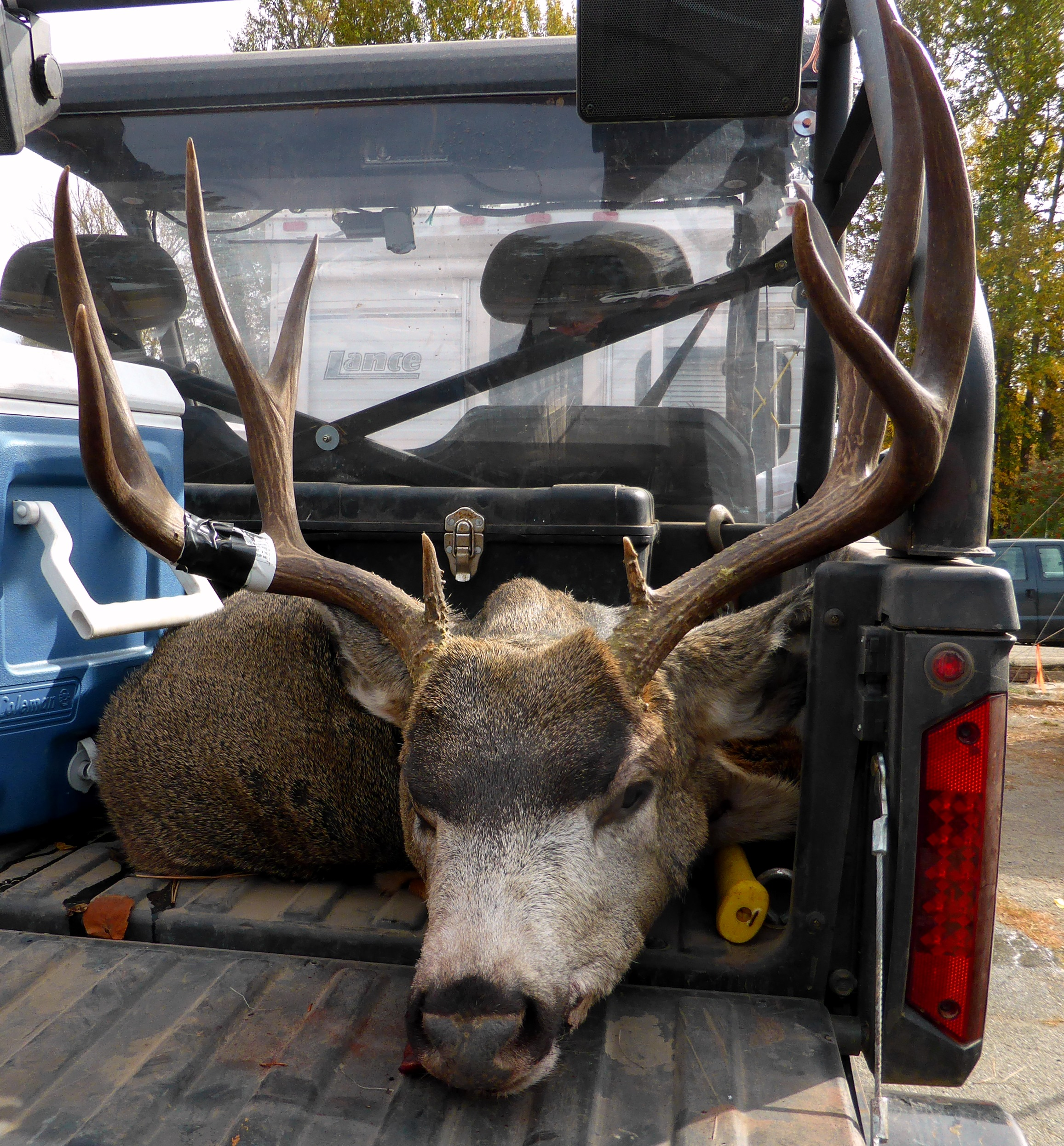 Dry Landscape Hampers Some Deer Hunters But Not All The