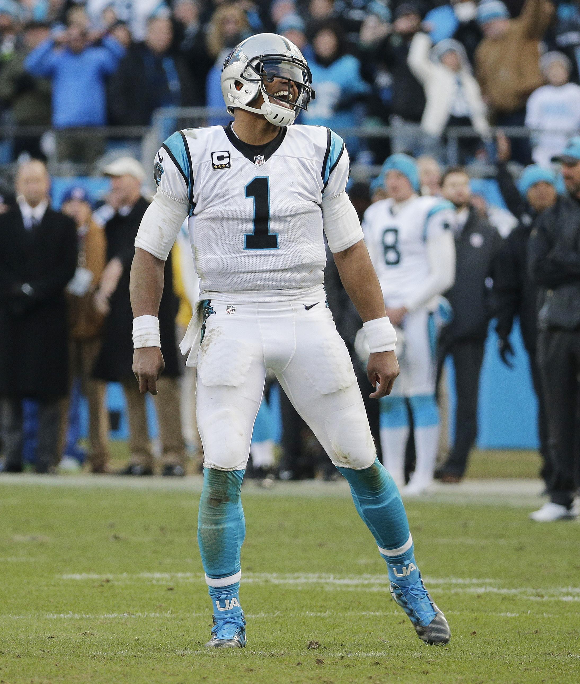 Seahawks_Panthers_Football.JPG_j0m5iDJ.j
