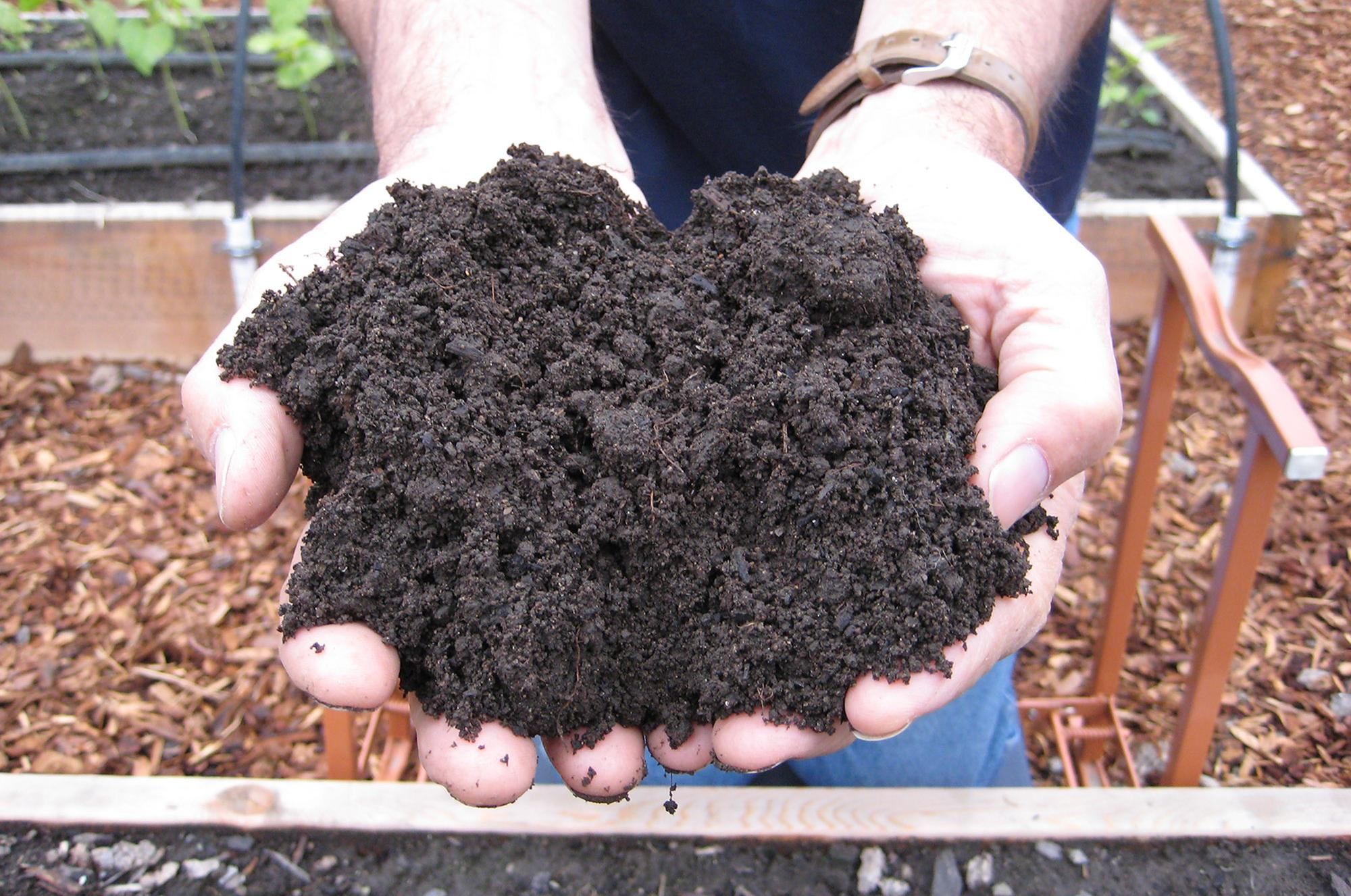 In The Garden First Step Is Taking Care Of Soil The Spokesman