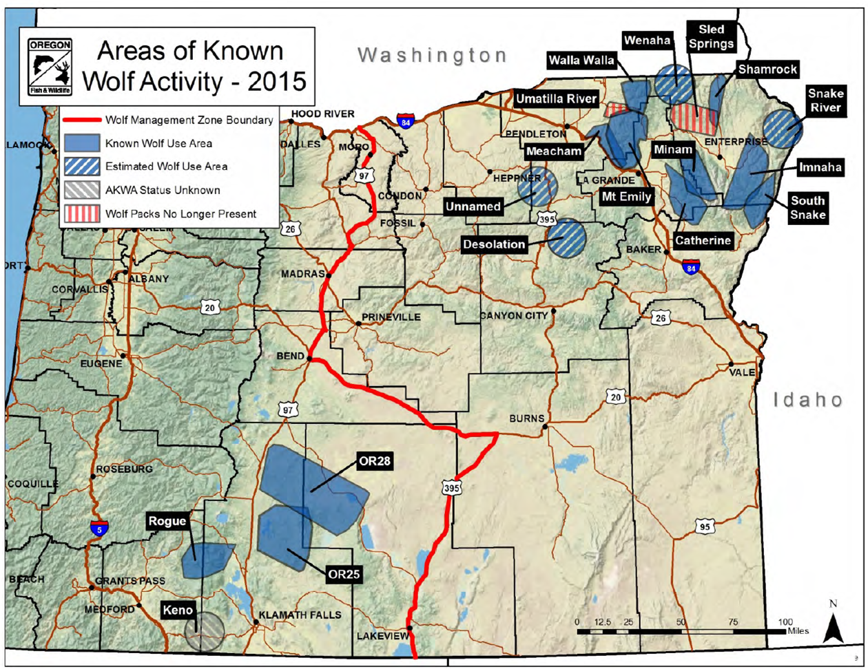map shows wolf packs and wolf activity doented at the end of 2015 by the oregon
