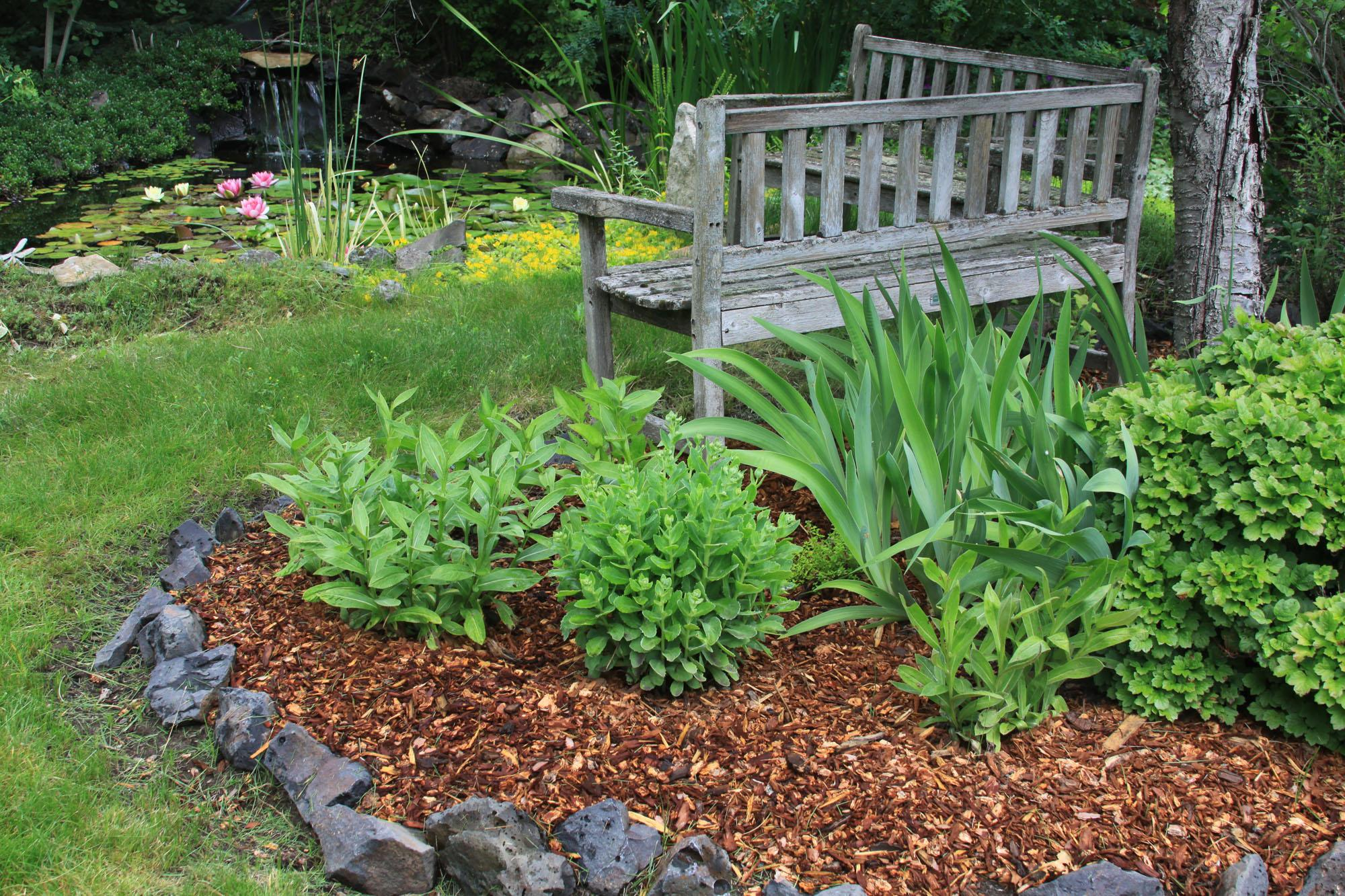 Mulching Around Plants With Bark Mulch Or Lawn Clippings Cuts Down On Weeding And Helps The