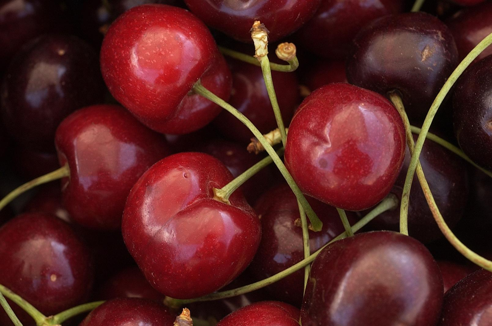Bing Cherries Could Be In Shorter Supply This Year