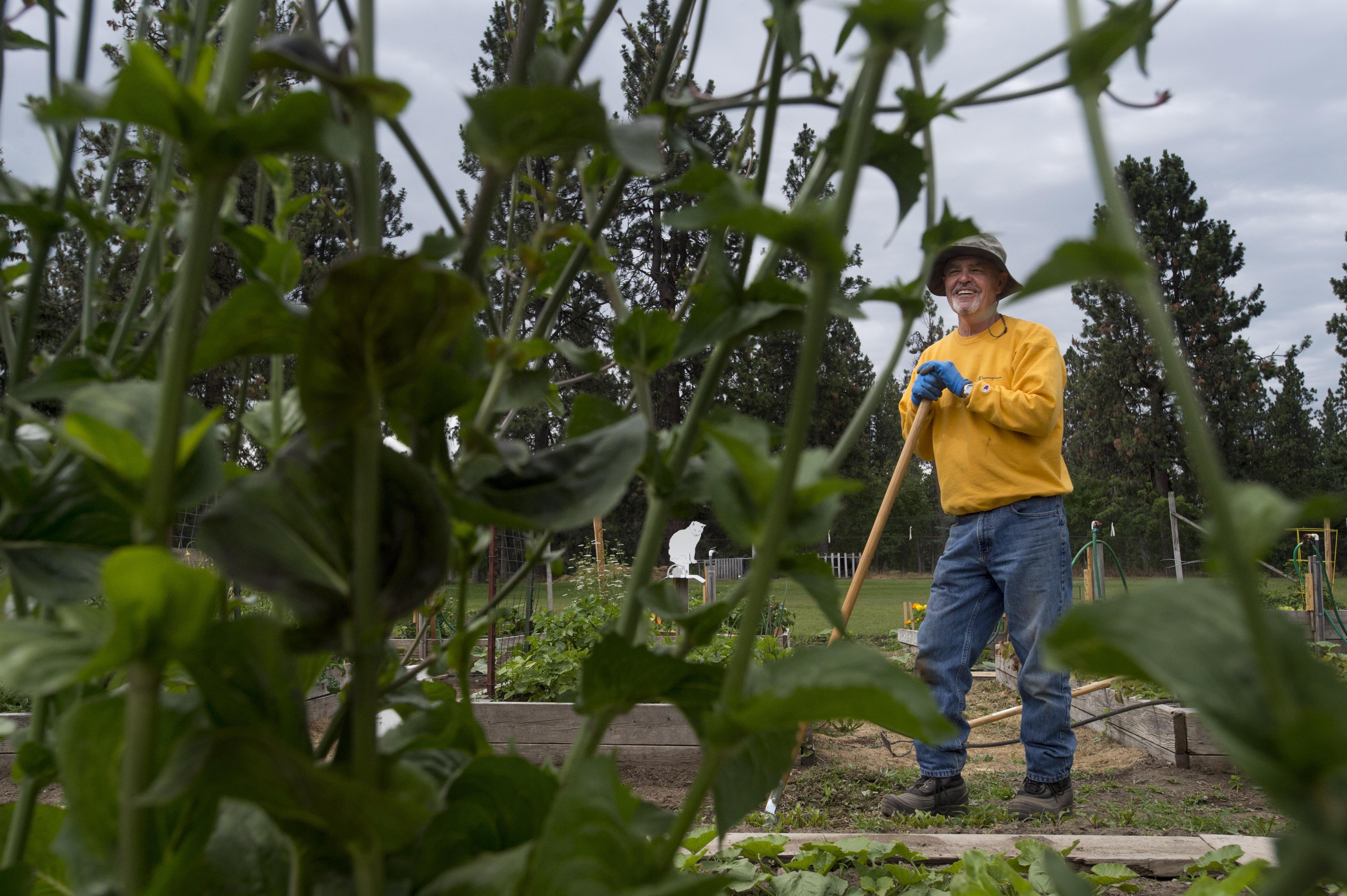Photo Community garden The Spokesman Review