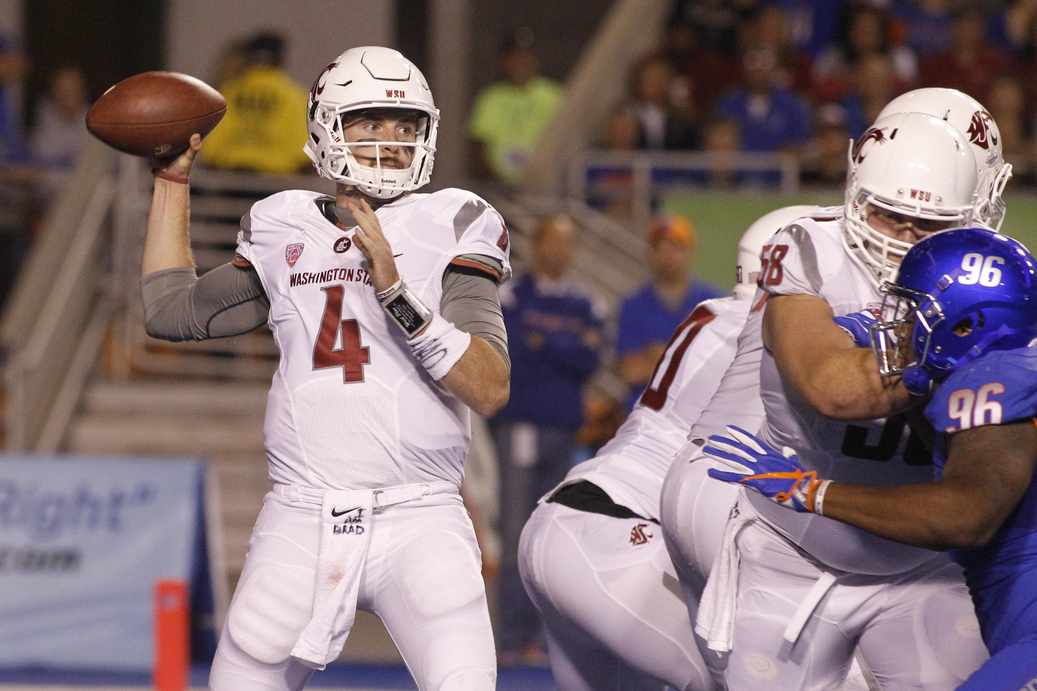 Image result for Image of WSU Boise State