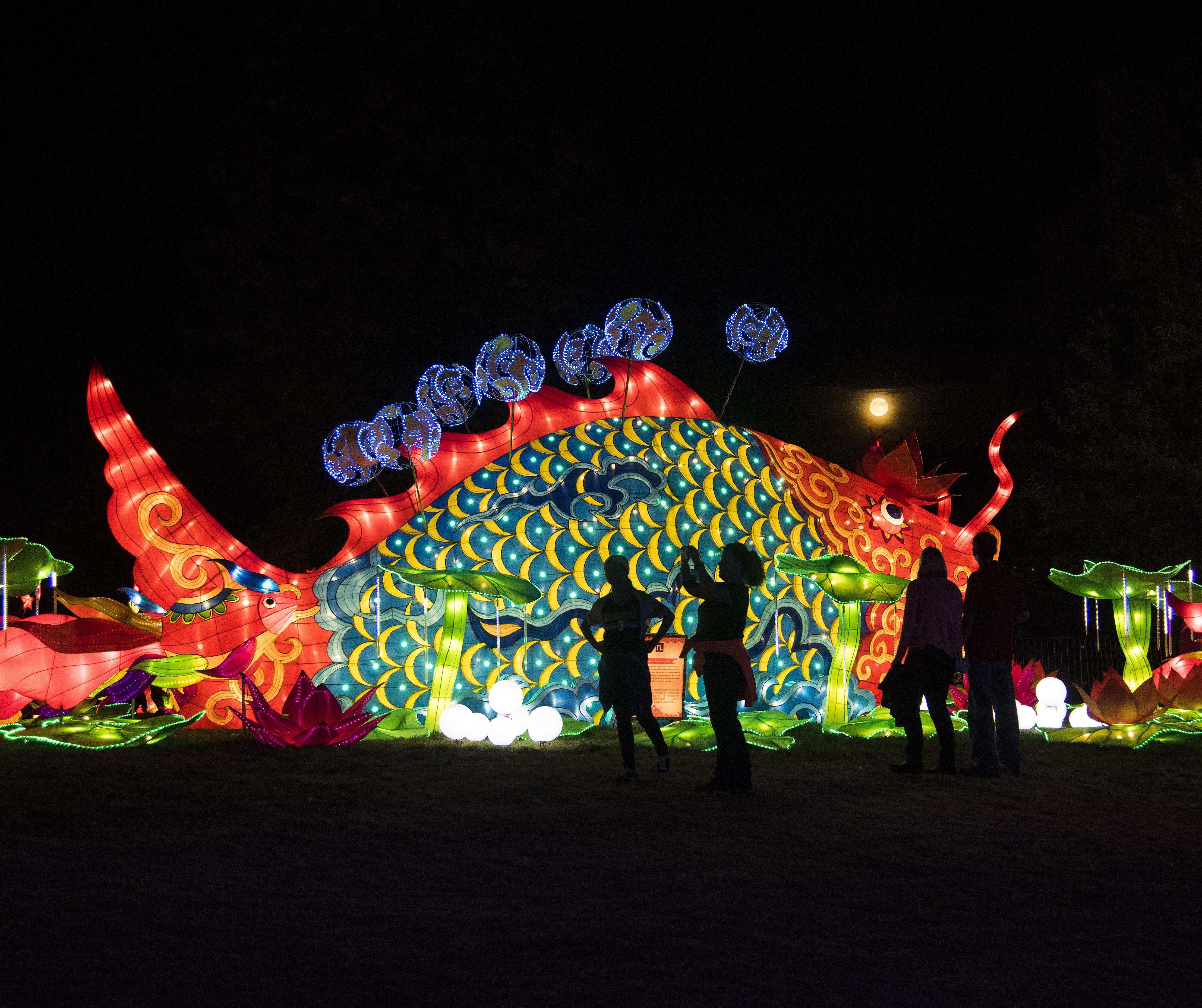 vistors watched the full moon rise over the prosperous fish lantern display in riverfront park when