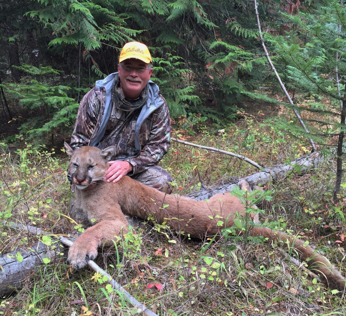 Todd Klement Of Spokane Shot A Cougar That Stalked Him While He Was Muzzleloader Hunting For