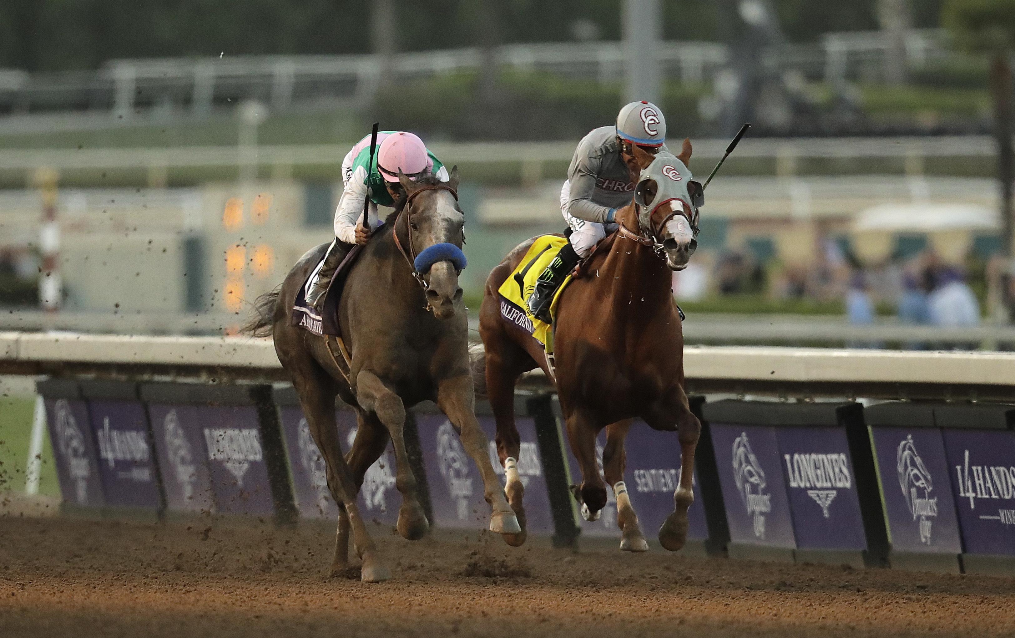 California Chrome Still Favorite For Horse Of The Year