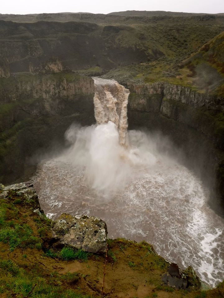 snowmelt palouse falls roaring with flood stage waters the spokesman review