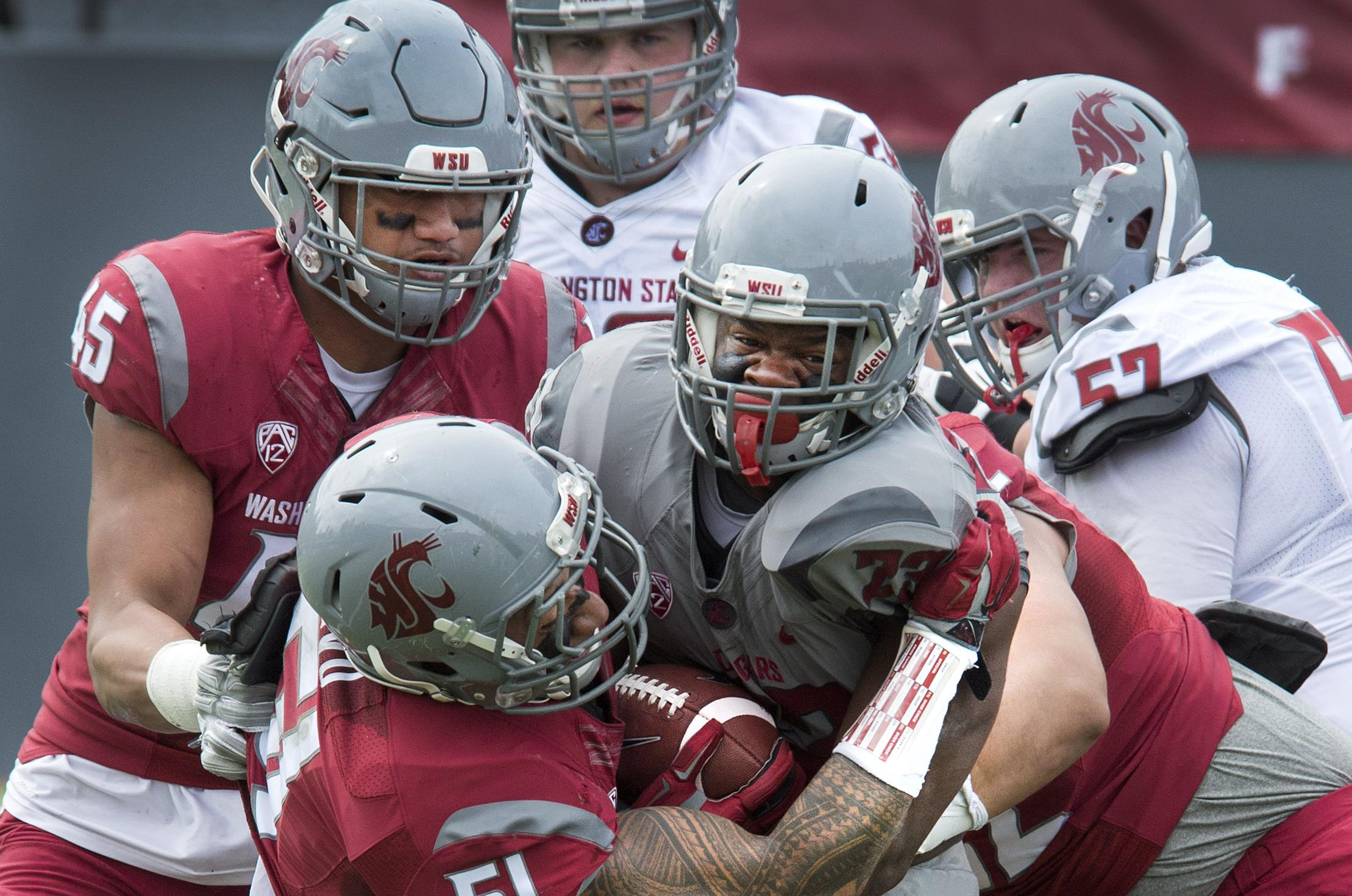 washington state strives for equal sides in annual crimson and
