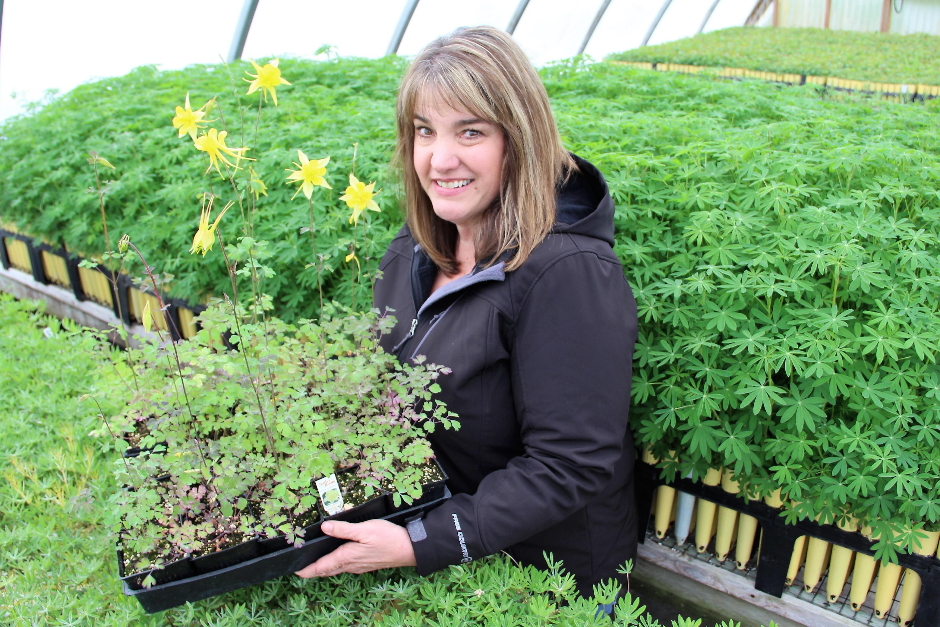 Kathy Hutton Manages Plants Of The Wild In Tekoa Nursery Grows 125 Species