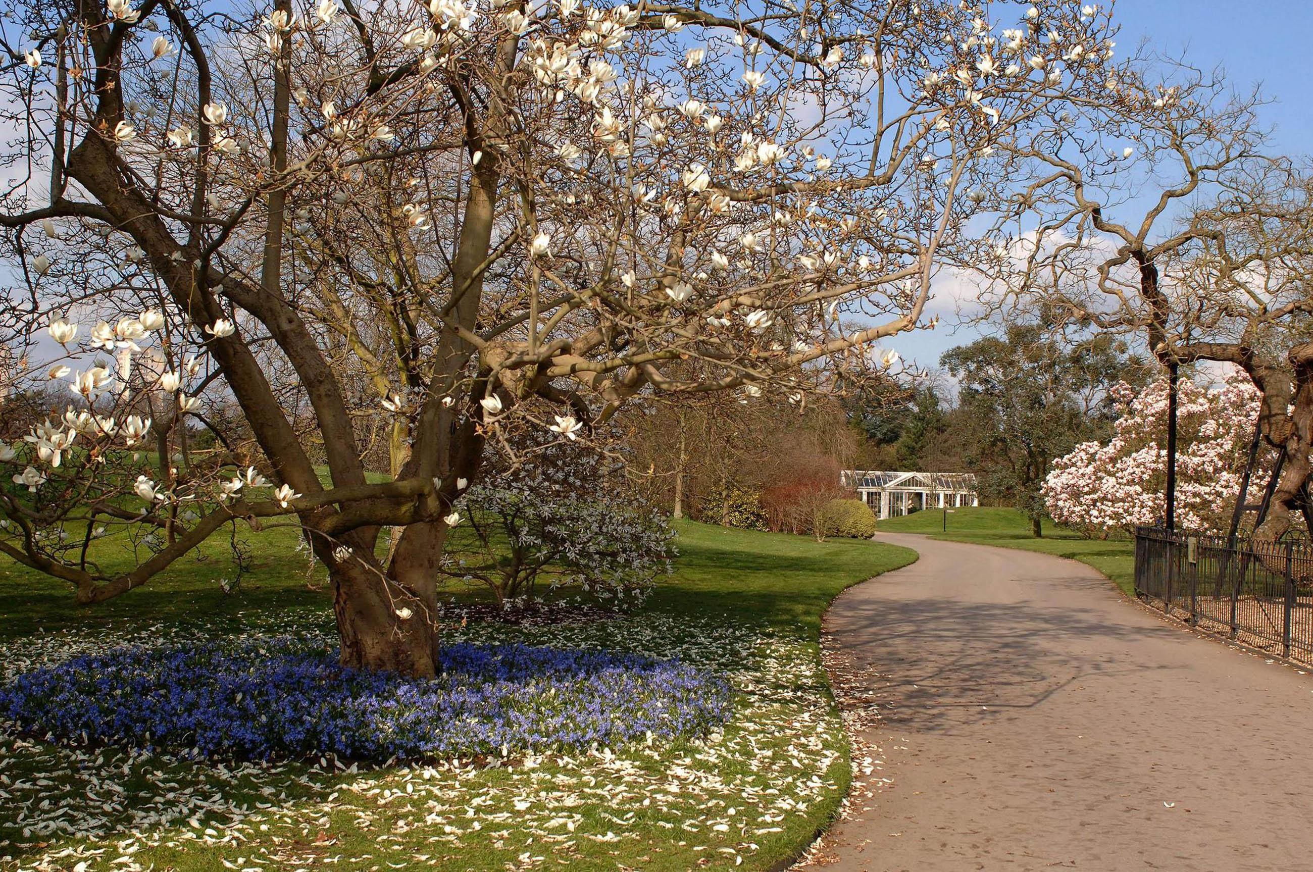 Gardening columnist, travel expert to discuss planned England garden ...
