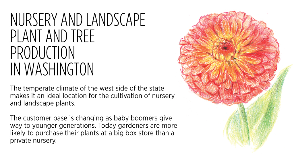 Western Washington Nurseries Changing Along With Consumer