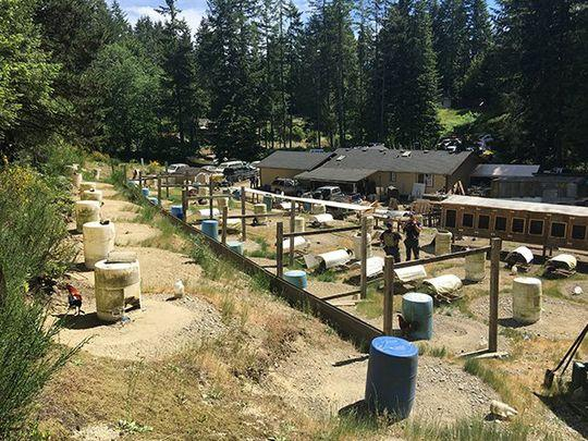 Two charged in alleged South Kitsap cockfighting ring | The