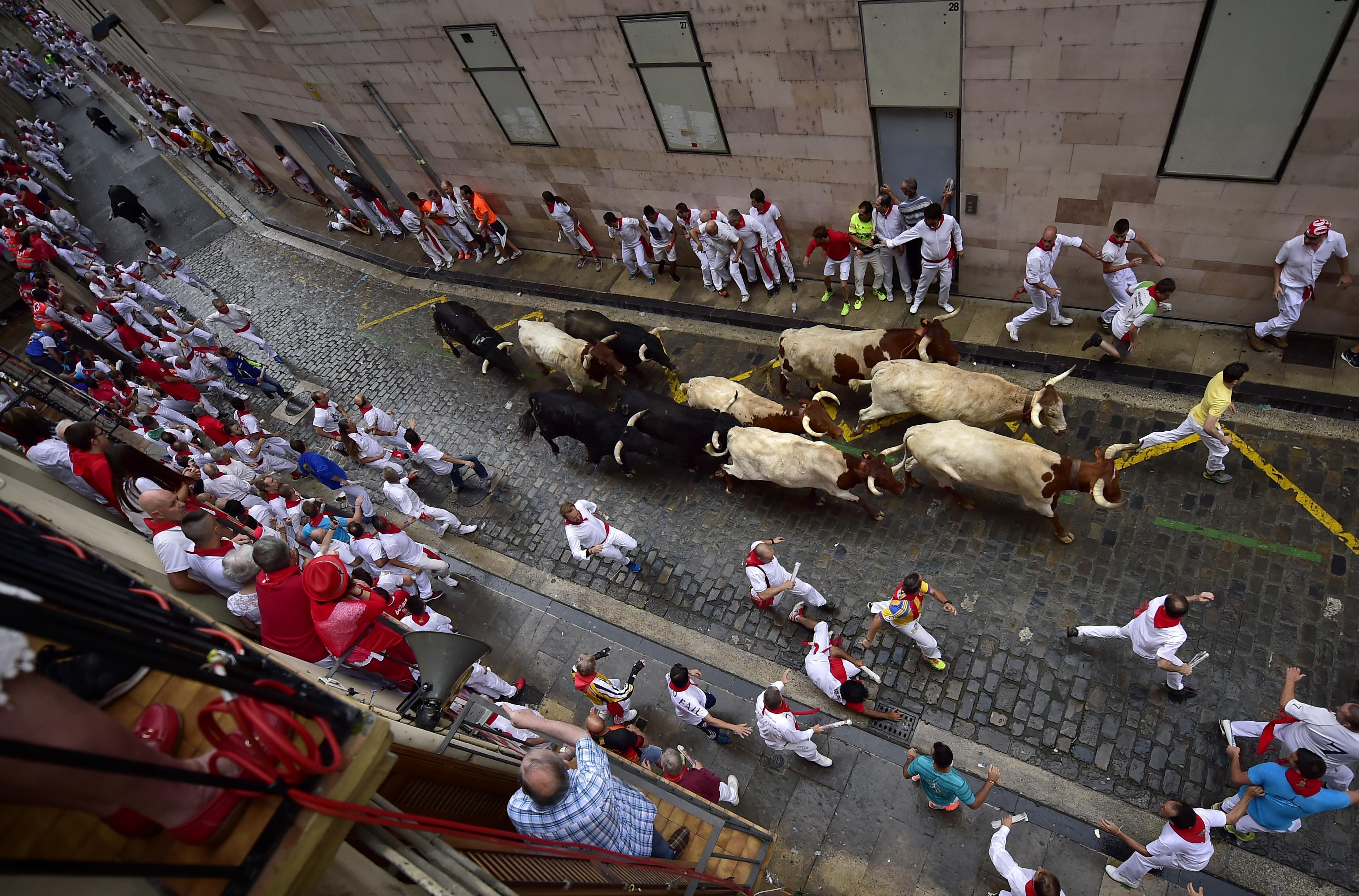 Running Of The Bulls Festival Food