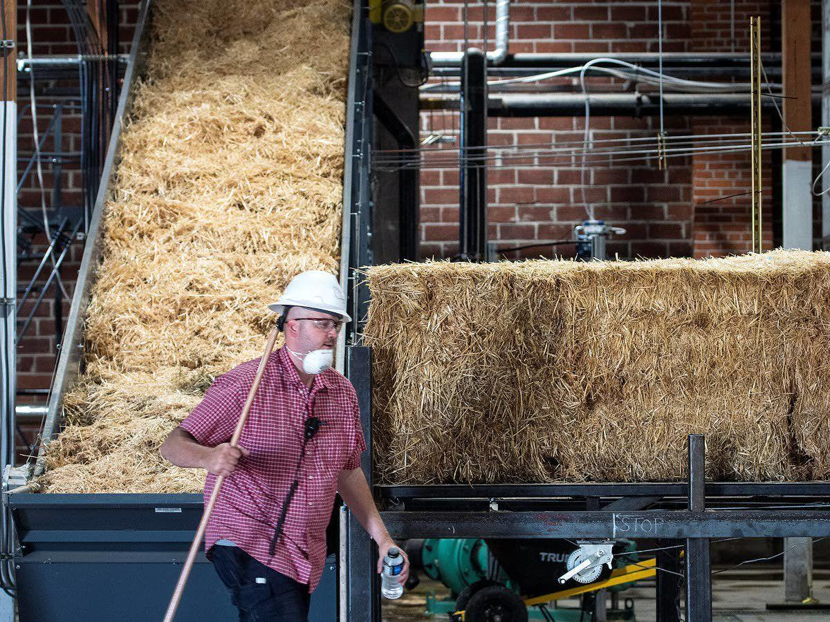 Like gold from straw: Columbia Pulp plants promise to turn wheat