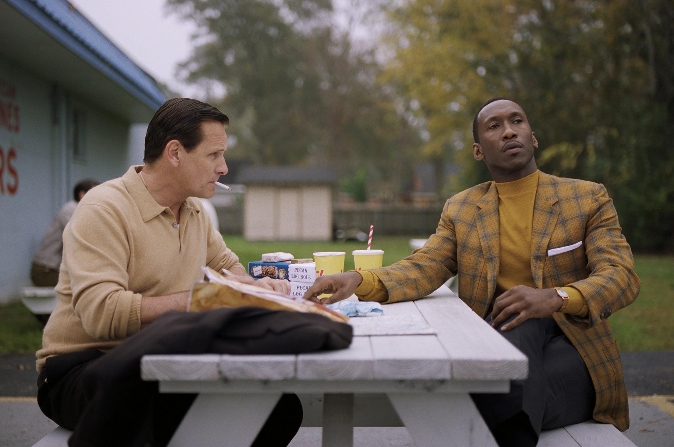 Stream On Demand Much Debated Green Book Comes To Home