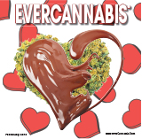 EVERCANNABIS February 2019